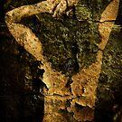 The Broken Woman by Jak Savage (aka Unbeknown)