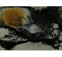 Aesthetic Photographic Print