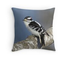 Downy Woodpecker - Boybird Throw Pillow