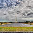 San Jacinto Monument by venny