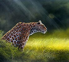 Leopard stalking by Mutan