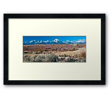 Willow Flats Framed Print