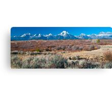 Willow Flats Canvas Print