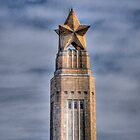 San Jacinto Monument by venny