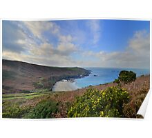 Cornwall: Above Portheras Cove Poster