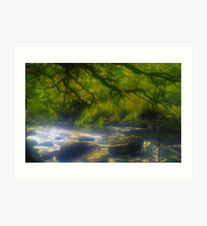 Autumnal River Dart Art Print