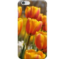 Red and Yellow Tulips  iphone case iPhone Case/Skin