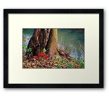Down by the Riverbank Framed Print