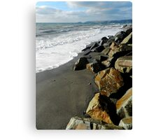 A Windswept Shore Canvas Print