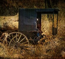 The Cart Before the Horse by vigor