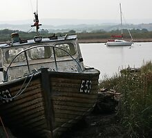 Tired old boat by Tony Steel