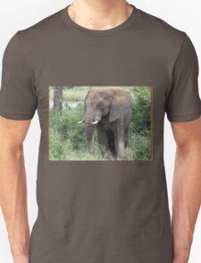 The Elephant {Loxodonta Africana} T-Shirt