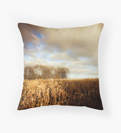 Home Woods Throw Pillow