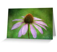 Grunge Coneflower Greeting Card