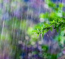 crazy rain by Victor Bezrukov