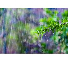 crazy rain Photographic Print