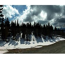 Strathcona Park Photographic Print