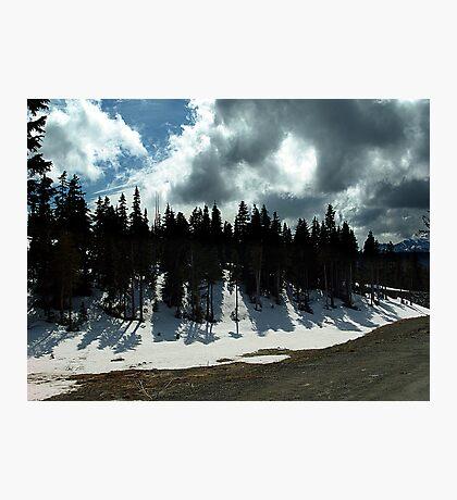 Strathcona Park Photographic Print