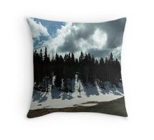 Strathcona Park Throw Pillow
