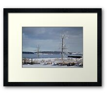 Brrrrr -28C With the Windchill! Framed Print