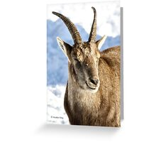 Dreaming of high mountains Greeting Card