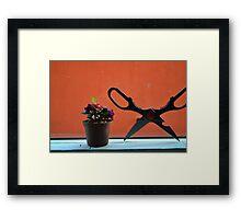 Orange Blast  Framed Print