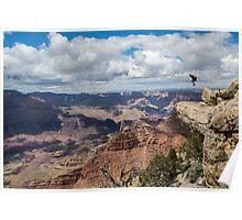 Jesse La Flair - Grand Canyon  Poster
