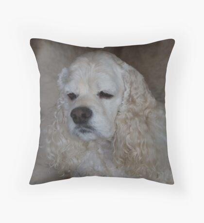 """""""Halo"""" Throw Pillow"""