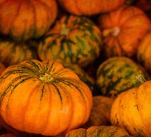 Pumpkin still life by Celeste Mookherjee