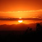 African Sunset by tracyleephoto