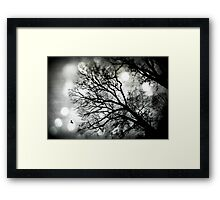 A Tree grows in Marietta Framed Print