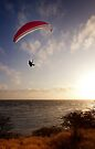 Sunset Paragliding  by Alex Preiss