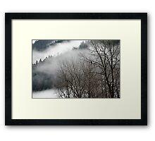 Skagit river eagle Framed Print
