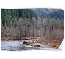 Skagit River Poster