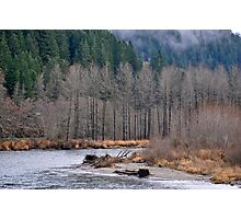 Skagit River Photographic Print