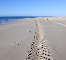 Tracks to nowhere by SandycPhotos