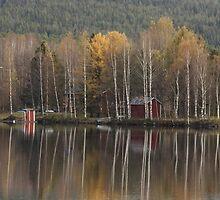 River Kemijoki in autumn by Susanna Hietanen