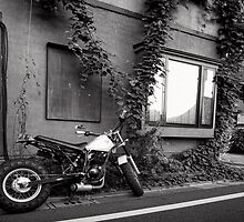 Swings and Drums - Japan by Norman Repacholi