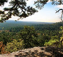 A Nice View From Robber's Cave by Carolyn  Fletcher