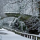 Jesmond Dene Bridge by David Pringle