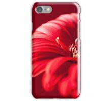 Gerbera 1 (IPhone Case) iPhone Case/Skin