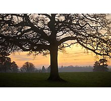 Late Glow .. Road To Clyst Hydon Photographic Print
