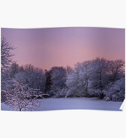Snow Scene At Sunrise Poster