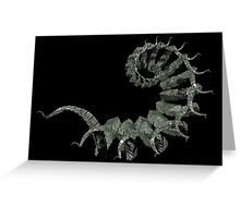 Fractal Cubes Greeting Card