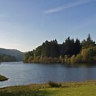 Lord's Island at Derwentwater by David Pringle