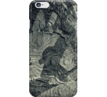 Grain Of Truth iPhone Case/Skin