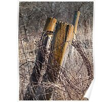 Fence Posts and Barbed Wire Poster