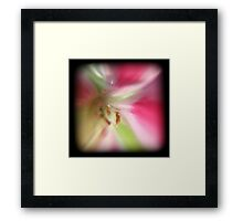 Color 30 Framed Print
