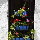 Typical Spanish window by Lorenzo Salas-Morera