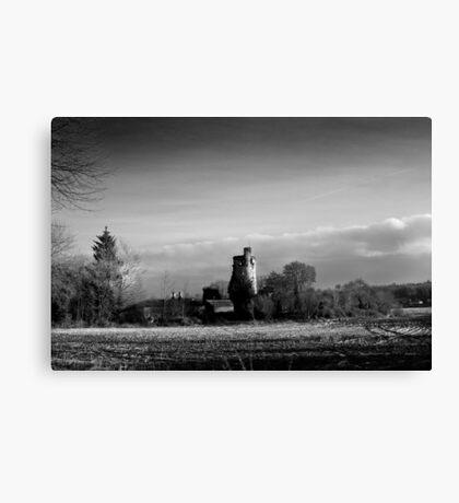 Winter Sun in Macollop Canvas Print